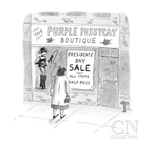 roz-chast-an-adult-sex-store-called-the-purple-pussycat-has-a-sign-in-the-window-for-new-yorker-cartoon